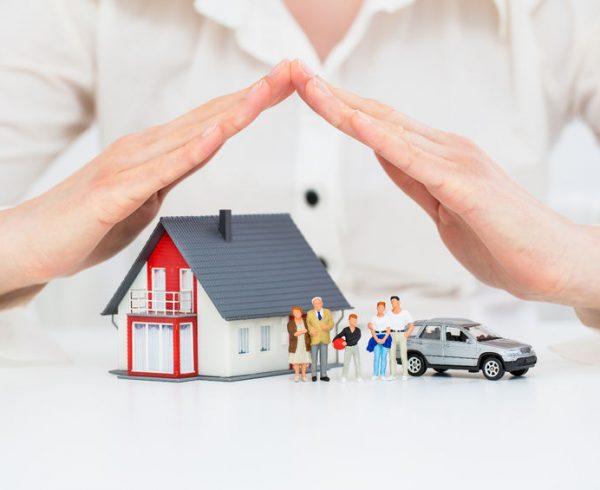 בחירת הביטוח הנכון עבור ההשקעה שלכם- תשאלו אותנו